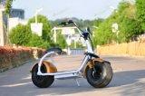 Kerstmis die de Populairste Klassieke Elektrische Autoped van Coco van de Stad Harley verkoopt
