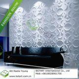La BST Revêtement mural ignifugé 3D, la carte du panneau étanche carte du panneau de papier peint (BST10017)