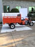 150cc/200cc/250cc 3車輪のガスのオートバイの貨物Trikeか三輪車(SL200ZH)