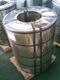 Гальванизированная стальная катушка (CS-GI)