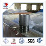 1 capezzolo di Sch 80 s. A. 312 gr. TP304L NPT di pollice di 1/2