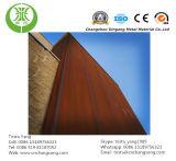Конструировать лист Corten стальной для украшения панели стены