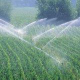 Polvere del fertilizzante organico EDDHA-Tecnico di assistenza