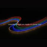 유연한 60 LEDs/M LED 지구를 방출하는 SMD 335 측