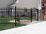 La polvere moderna di lucentezza ha ricoperto la rete fissa saldata del giardino del picchetto di cancello incurvato