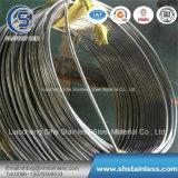 Tp316 Tube en acier inoxydable sans soudure bobine avec une haute qualité et de grande longueur