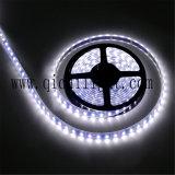 Tira brillante estupenda de Flexibe 2835 LED de la larga vida del mejor precio