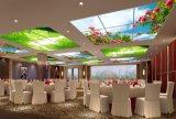 LED 스카이라이트 천장 램프 사각 LED 편평한 위원회 600*600