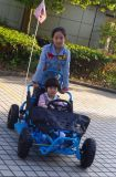 Venta al por mayor Buggy 80cc Go Kart