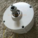generatore a magnete permanente 100W con il RPM basso