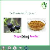 Выдержка Hyoscyamine 0.7%-2.5% белладонны свободно образца
