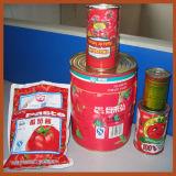Automatisches Tomate-Puder, das Maschine herstellt