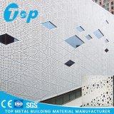 Panneau artistique en aluminium décoratif de Peforated de mur intérieur et extérieur