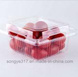 Do animal de estimação plástico transparente descartável universal da caixa da fruta do alimento caixa de empacotamento da cereja