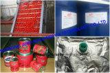 Tomatenpuree van de Onderbreking van Gewas 36-38% van Xinjiang de Koude