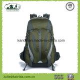 5つのカラーポリエステルナイロン袋のキャンプのバックパックD406