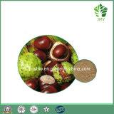 20% 40% 98% Aescin natürlicher organischer Rosskastanie-Startwert- für Zufallsgeneratorauszug
