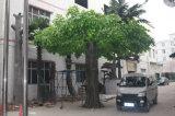 Ajardinando a árvore de Apple artificial