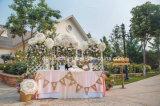 De elegante Met de hand gemaakte Leuke Mini Bruids Paraplu van de Decoratie van het Katoenen Huwelijk van het Kant