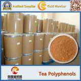 Polifenoli del tè della polvere della foglia di tè di verde del commestibile