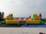 Gioco di sfera corrente gonfiabile di vendita calda, giochi gonfiabili di sport