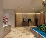 de 600*600mm Verglaasde Tegel van de Muur van de Tegel van de Vloer van de Tegel van de Decoratie Rustieke voor de Spaanse Stijl van de Decoratie van het Hotel Geen Misstap Sh6h005/06