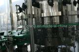 自動熱い販売はセリウムの証明書が付いている充填機械類を飲むことができる