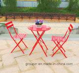 Conjunto del jardín plegable con diseño simple