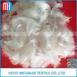 Vente en gros lavée de la clavette 4~6cm d'oie et de canard