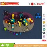 De Openlucht Plastic Speelplaats HD15A-113A van jonge geitjes