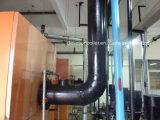Газ, дизельное масло, двойной боилер горячей воды топлива для гостиницы