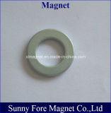 De dikke Permanente Magneet van de Ring