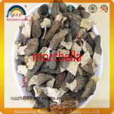 Morchella de la seta del alimento verde las mercancías de alta calidad