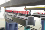 La mobilia di legno automatica Multi-Perfora la macchina (F63-6C)