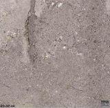 Tegels 600X600mm van het Porselein van het Lichaam van Trezzo Volledige (EC01)