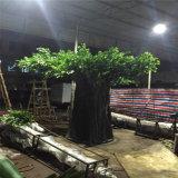 Albero di Banyan simulato denso di vendita calda