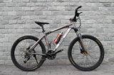 Bicicletta della montagna di 26 Pama con velocità 27