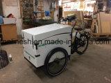 250With500Wは電気自転車かElektrische Bakfietか電気貨物TrikeまたはポストEのバイクまたは郵便急使の三輪車W Bafang Middenモーターのボックスの下の電池表現する