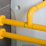 Barre d'encavateur en nylon de garantie de toilette pour le débronchement ou les personnes âgées