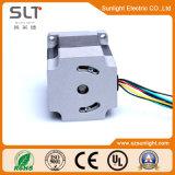 36V 정원 계기를 위한 전기 무브러시 DC 모터