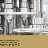 Completare la strumentazione di riempimento di coperchiamento di riempimento di lavaggio della spremuta automatica