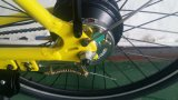 Elektrischer Fahrrad-Kreuzer mit Zustimmung En15194