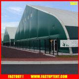 Vento occidentale di vendita caldo del capannone dei velivoli resistente con la struttura di alluminio