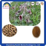 100% 자연적인 접착성 Rehmannia 루트 괴경 추출