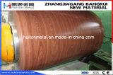Деревянные зерна из стали с полимерным покрытием для катушки зажигания