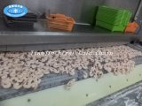 Congelador rápido del túnel de la fuente de la fábrica para los pescados del pan de los mariscos