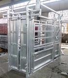 Во дворе коровьего бешенства крупного рогатого скота с помощью раздавить сожмите откидной панели двери задка с электроприводом и шкалы для продажи