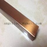 Testo fisso delle mattonelle di ceramica del bordo del testo fisso della parete dell'acciaio inossidabile 304