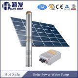 Bomba de água solares pesado para a irrigação (SK)