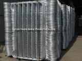 中国の製造者からの電流を通された溶接された金網は、低価格六角形の金網、販売のための溶接された金網に電流を通した